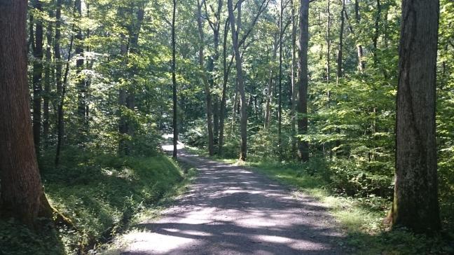 Ohiopyle Pennsylvania Hiking
